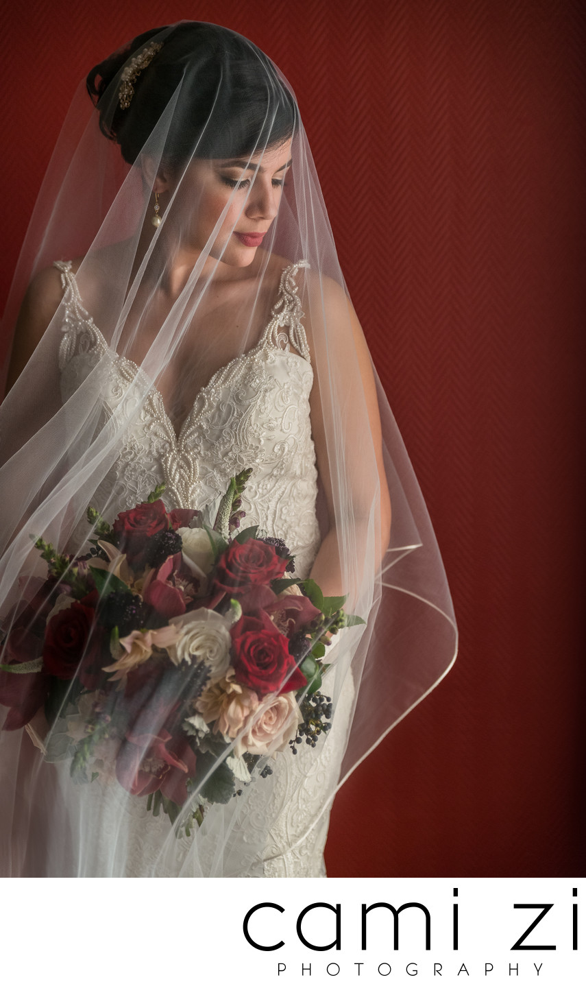 Beautiful Bridal Portraits
