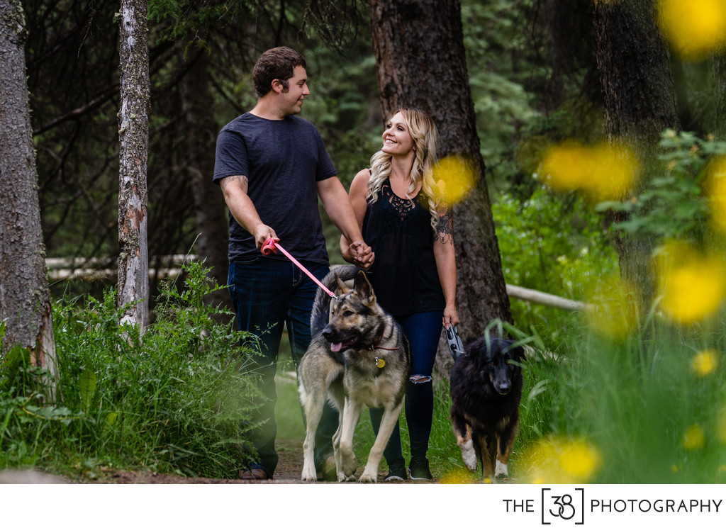 Engaged Couple Walking Their Dogs