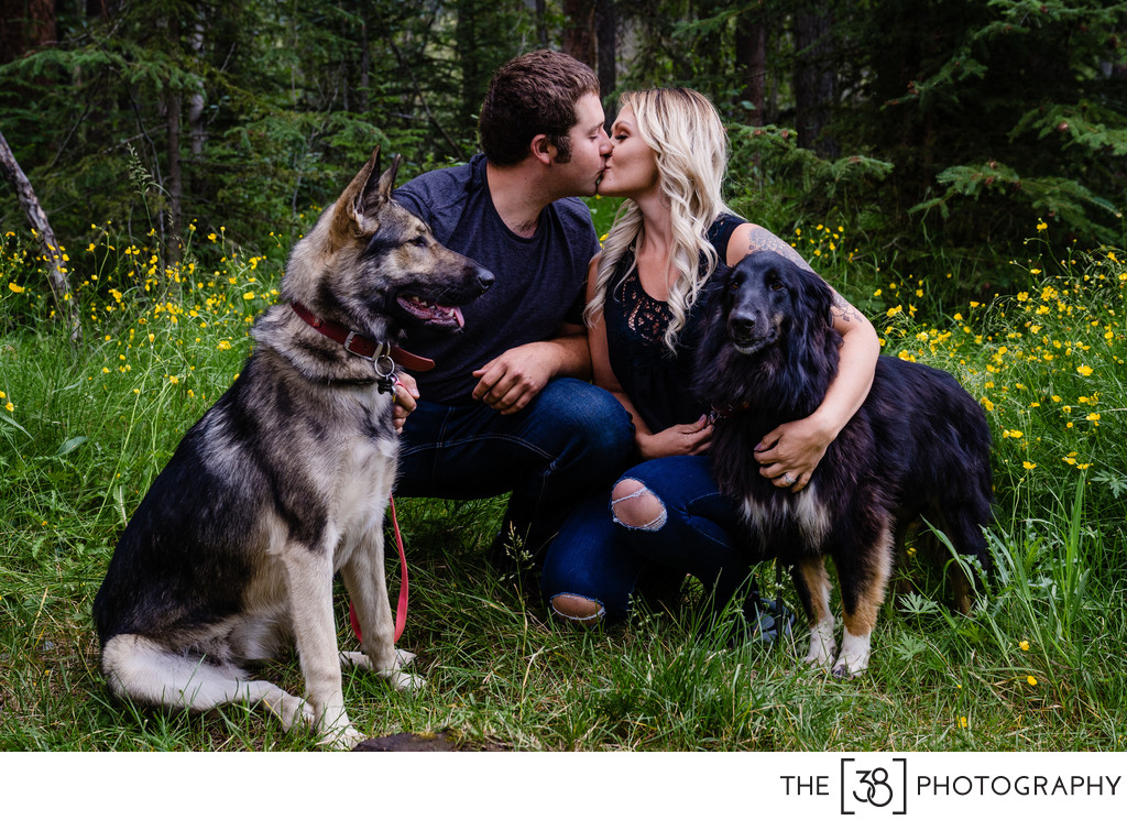 A Kissing Couple and Their Dogs