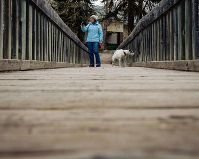 A Girl and Her Dog on the Bridge