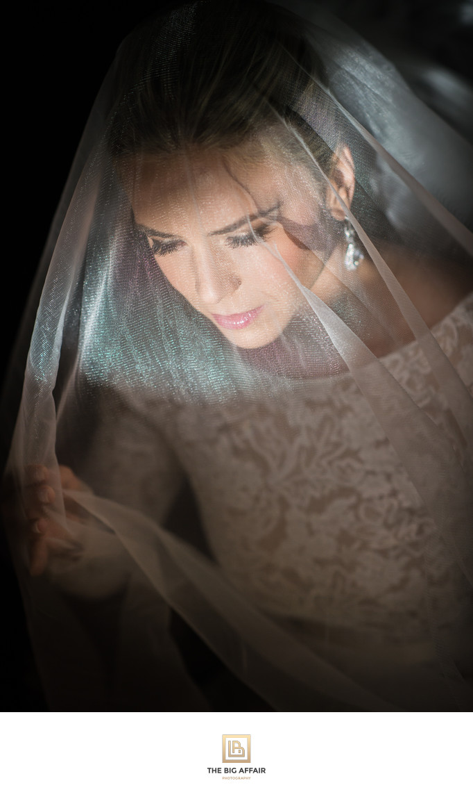 Ivana & Anoush Wedding