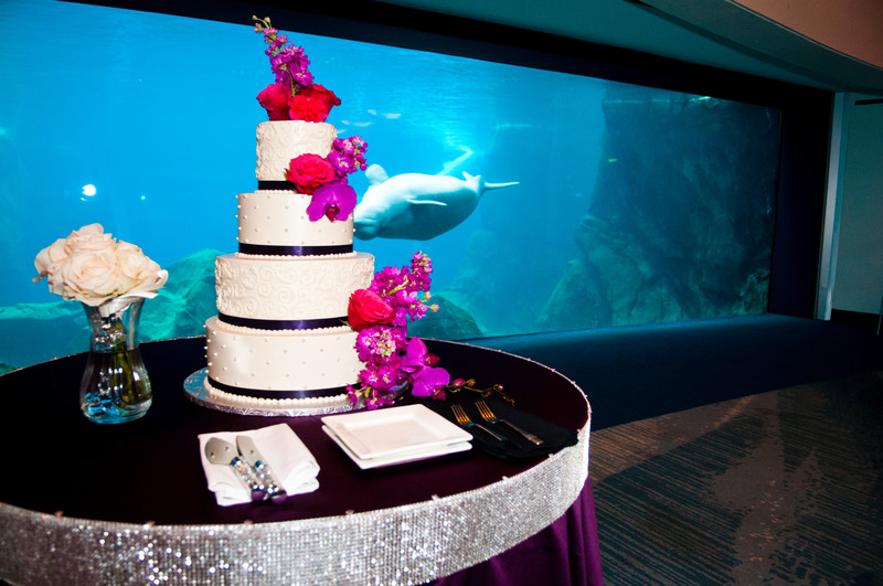 Georgia Aquarium Atlanta Wedding Photographer Cake