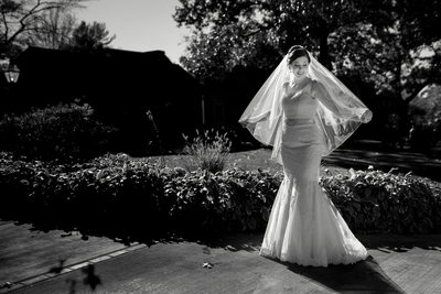 Best South Jersey Wedding Photographer