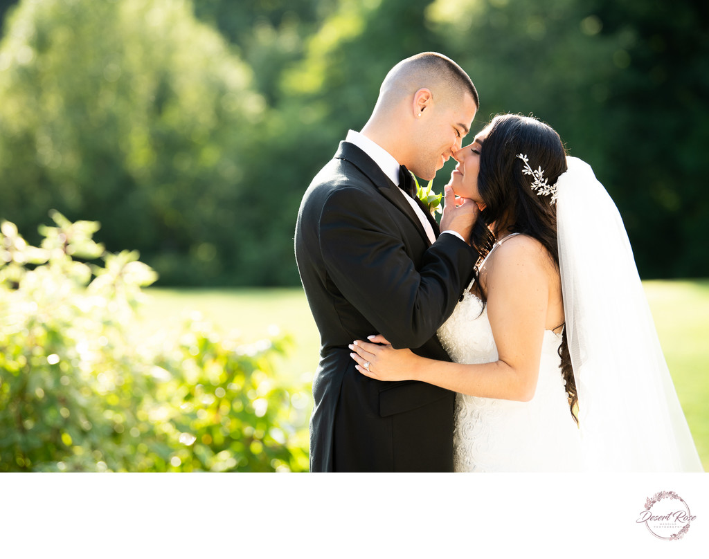 Signature Manor Wedding Photos - Desert Rose Weddings
