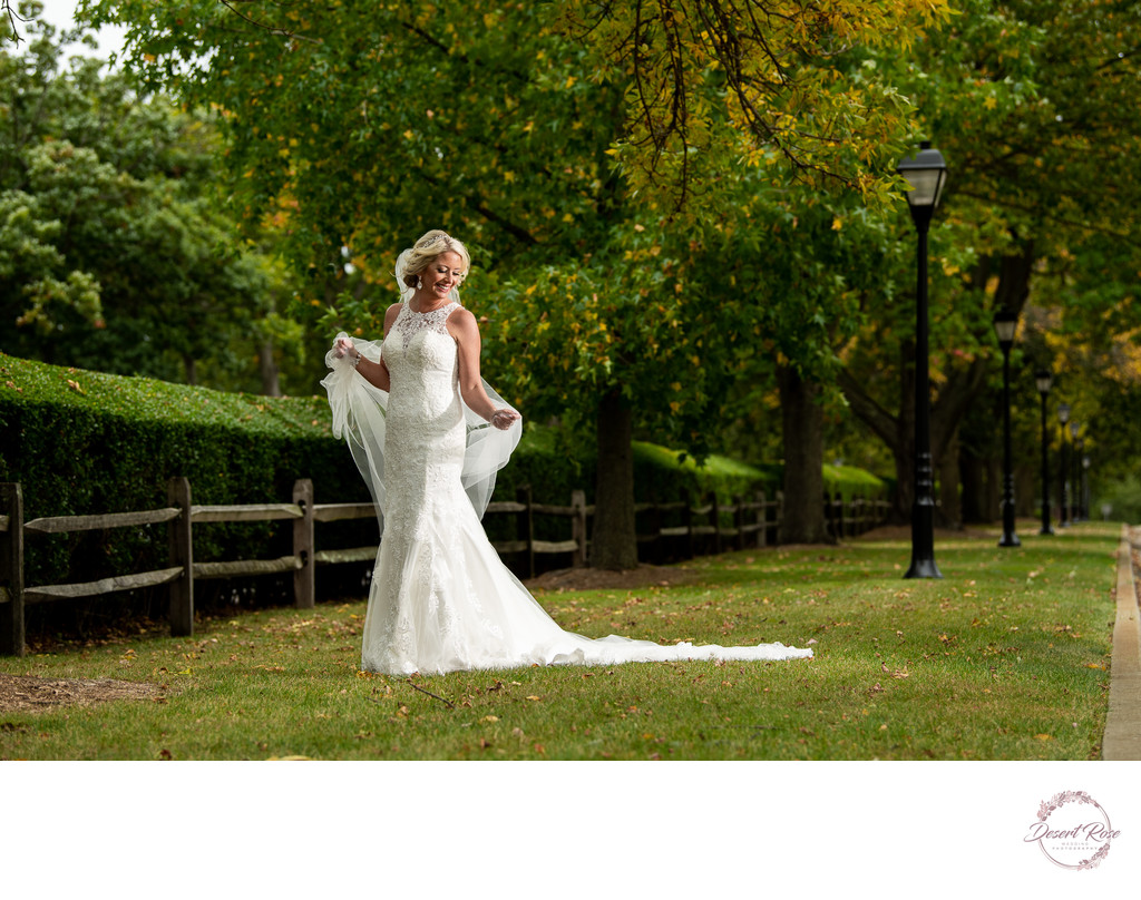 The Best Silver Sycamore Wedding Photos