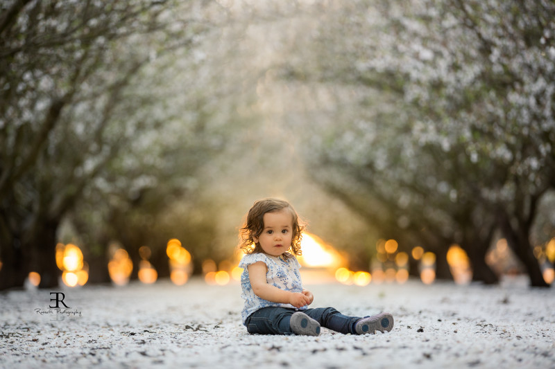 Tracy California Photographer Almond Blossom