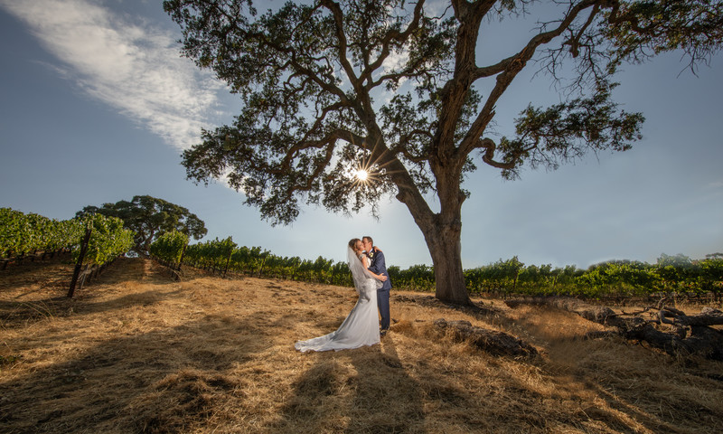 Murrieta's well Livermore Wedding Venue.