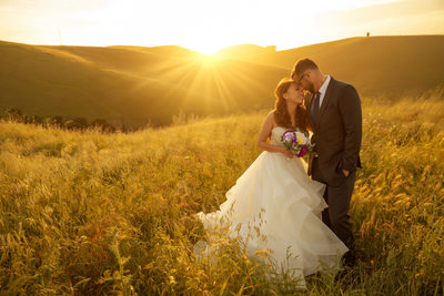 Sunset photos at nella terra cellars in Sunol California