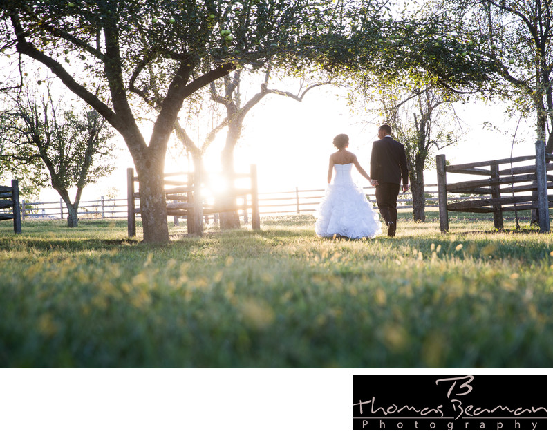 Ironstone Ranch Wedding Photography in Summer