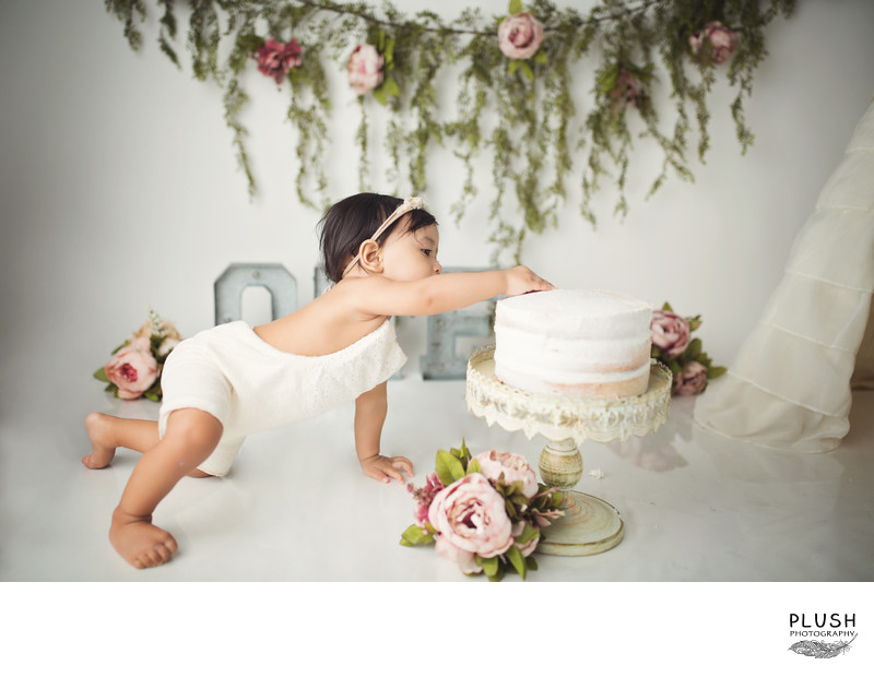 Plush photography one year milestone photo session_cake