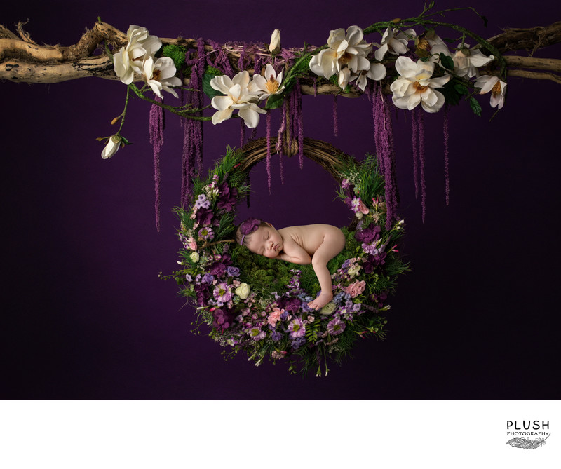 Plush Photography Hanging newborn Purple floral wreath