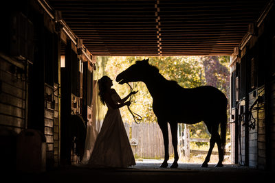 Wedding Portraits with Bride and Horse