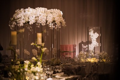 Ivory and White Decor at the Barnes Foundation