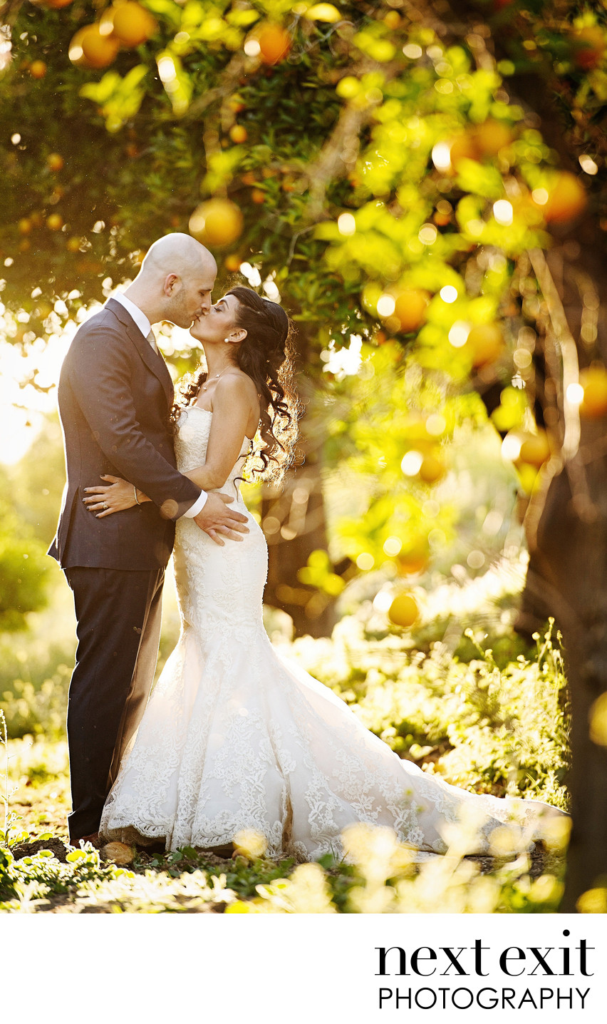 A wedding kiss in the Citrus Orchard - Los Angeles Wedding, Mitzvah & Portrait Photographer - Next Exit Photography