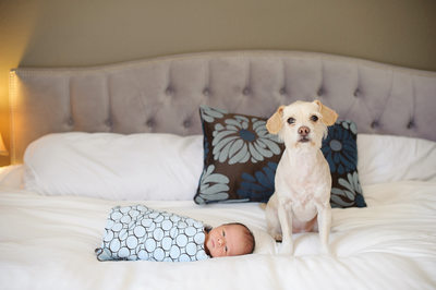 Beverly Hills Newborn Photography
