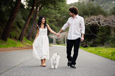 Dog Engagement Session Photography