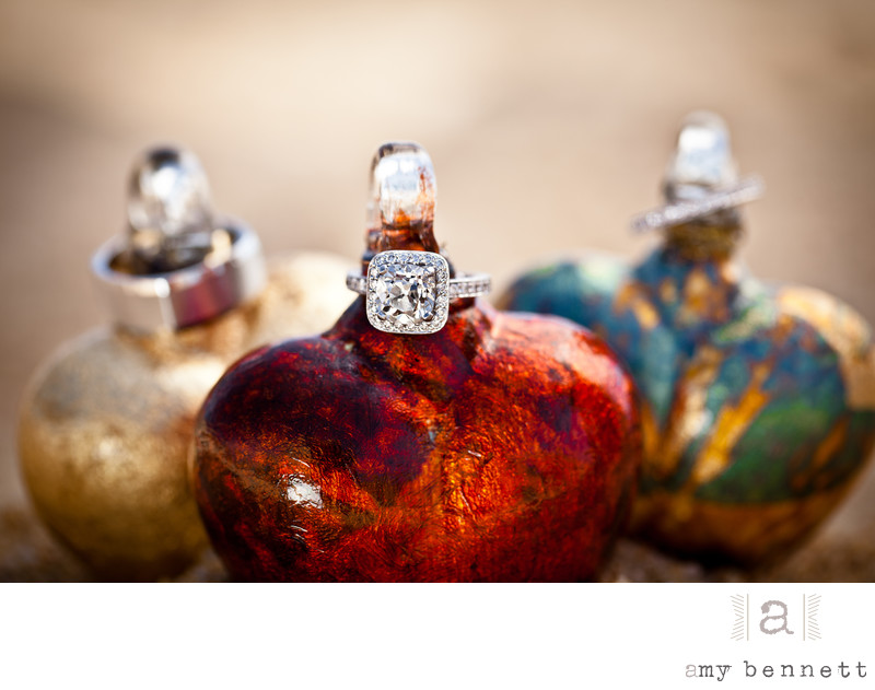 Rings on Ornaments Winter Wedding Photography