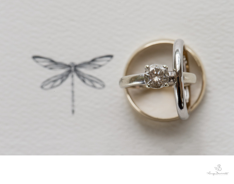Dragonfly & Rings