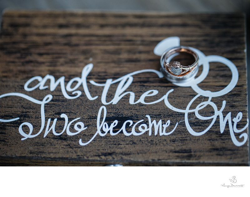 Wedding Photography Painted Sign With Ring Details