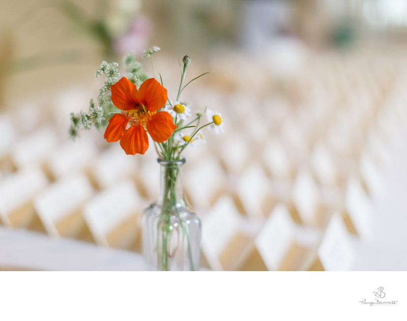 Splash of Color Wedding Decor