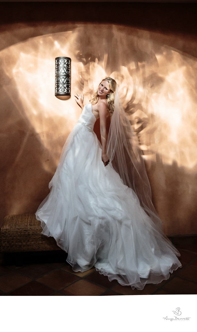 Bridal Portrait with Dramatic Lighting