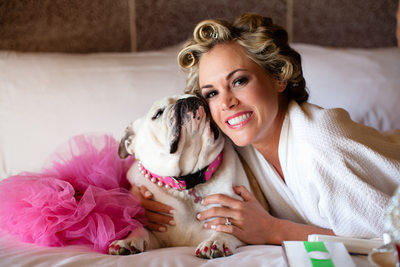 Bride and Bulldog Portrait Photography