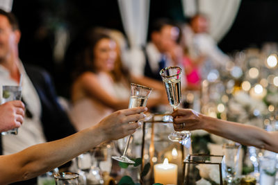 Champagne Toast Wedding Photography
