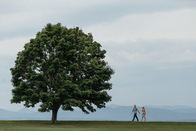 Pretty Tree Engagement at Shelburne Farms
