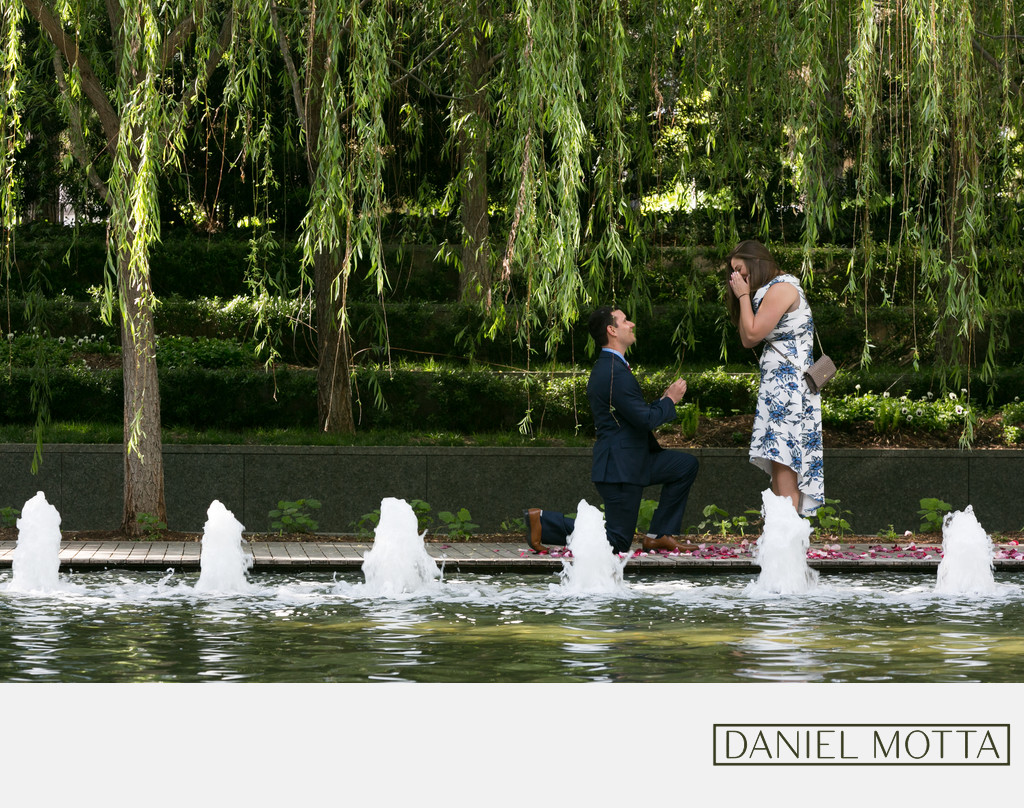 Surprise Proposal at the Nasher Sculpture Center