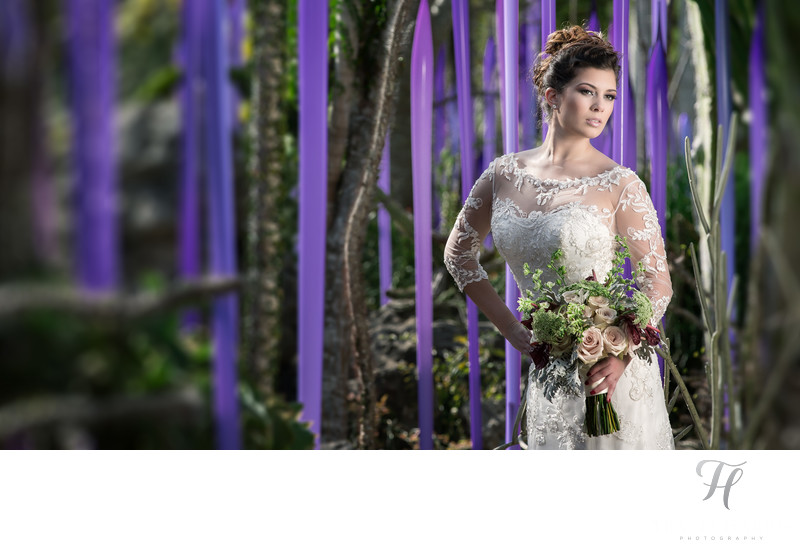 Miami Luxury Weddings