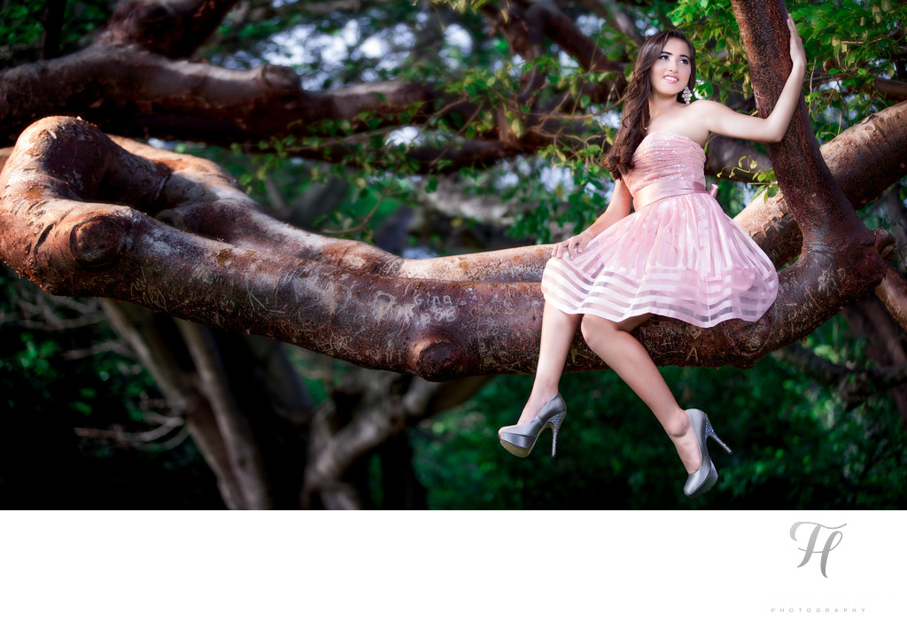 Quince Photos with a Tree in Miami