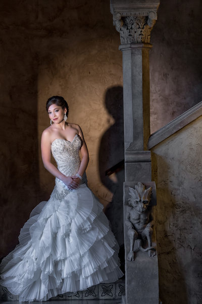 Biltmore Bridal Photo