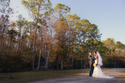 Top 10 Wedding Photographers Tampa Bay