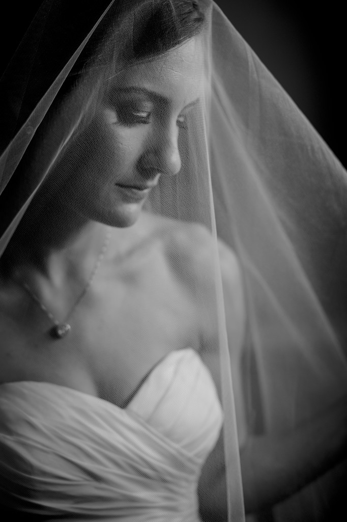 dc area fine art bridal portraits