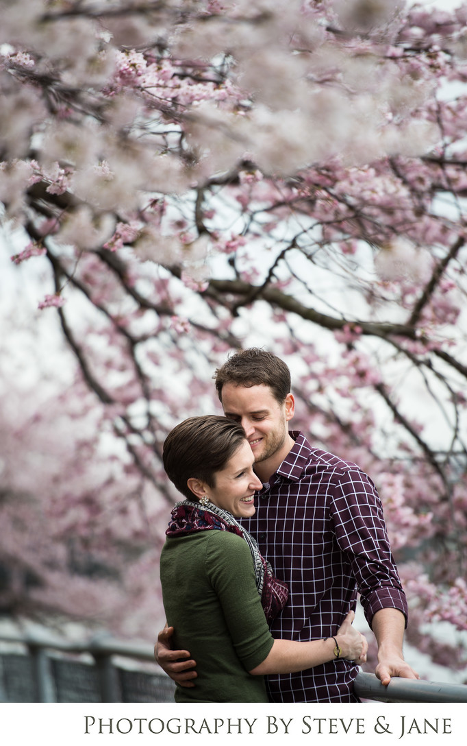 DC Cherry Blossom Engagement Session