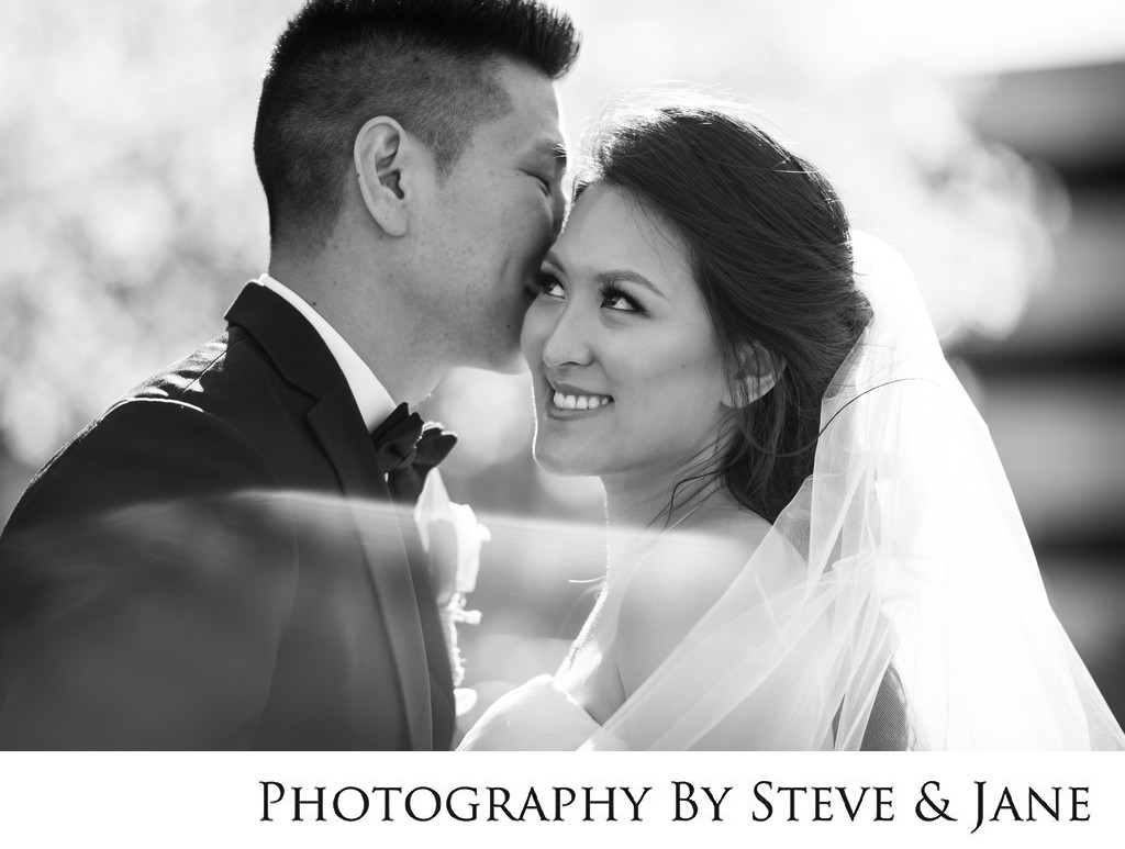 Westin Dulles Spring Wedding Portraits