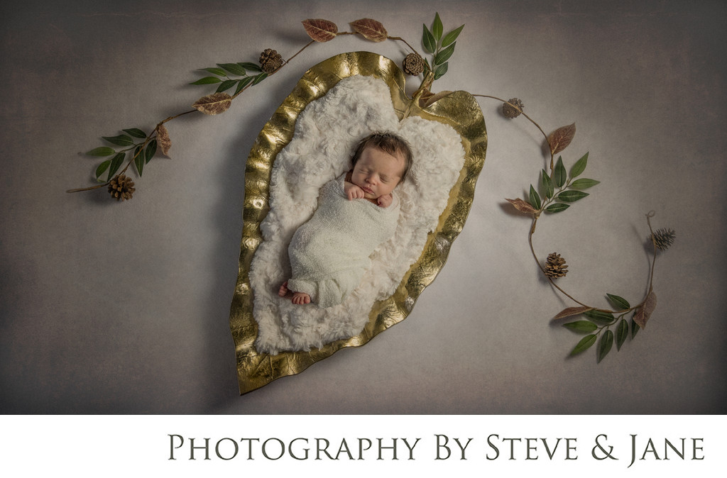 DC Fine Art Newborn Portraiture