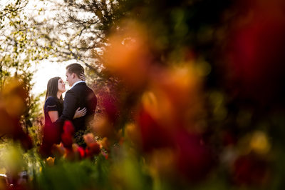 georgetown dc engagement portraits
