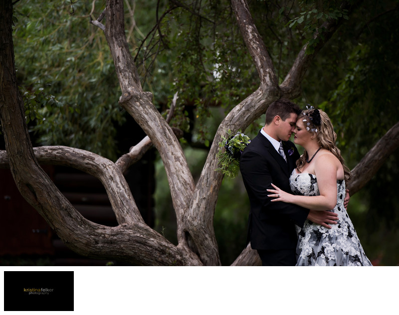 Wedding Photographers Red Deer