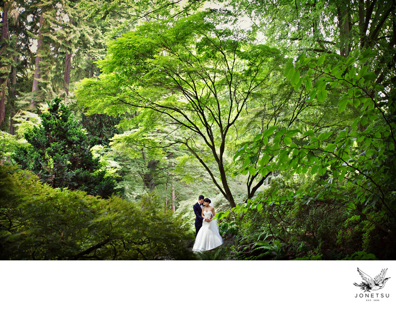 Stanley Park wedding photo in the trees