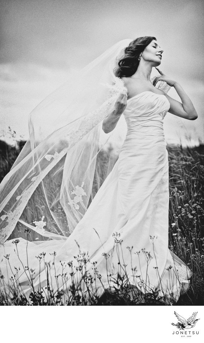 Bridal portrait with wind in her veil Thunder Bay field