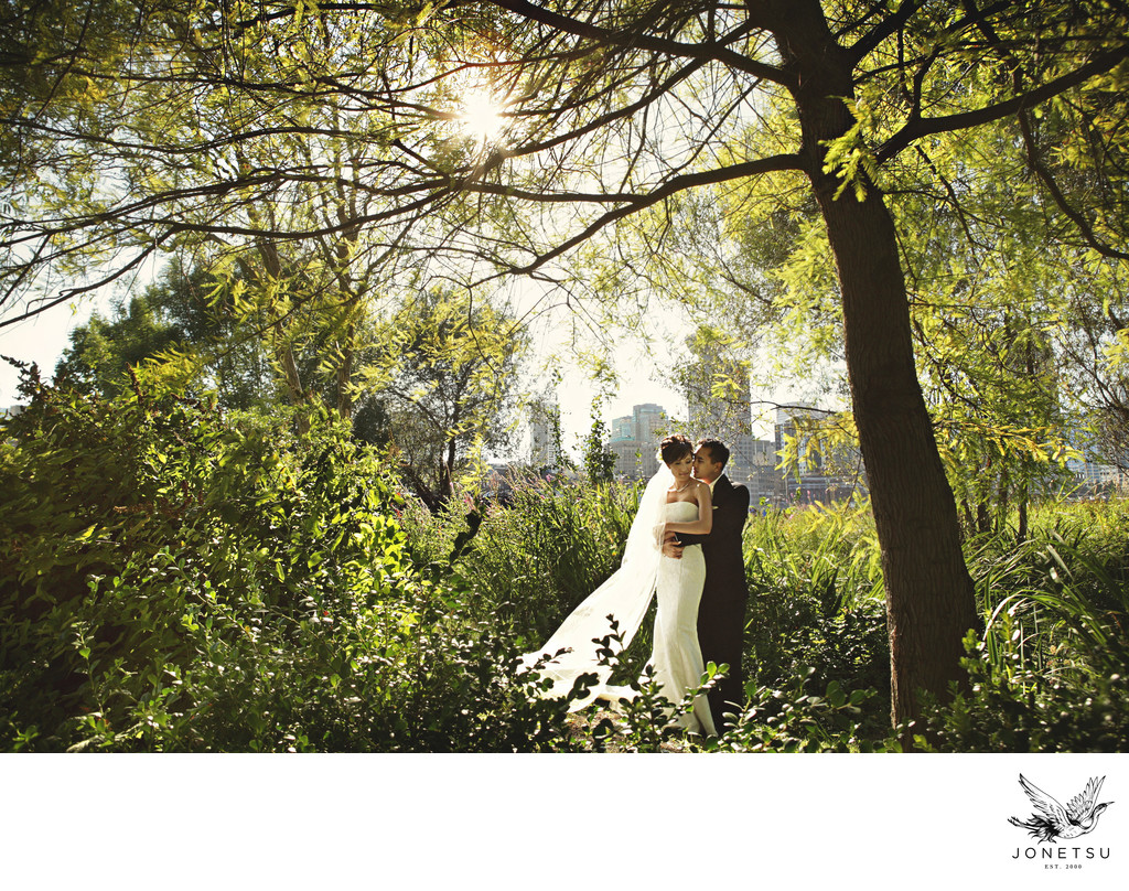 Vancouver wedding portrait with city and forest backlit
