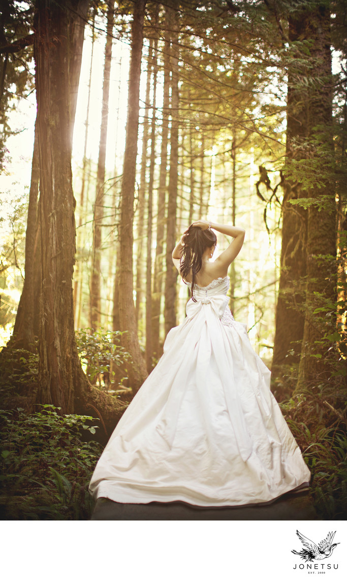 Wedding photos Cathedral grove in Manuel Mendoza gown