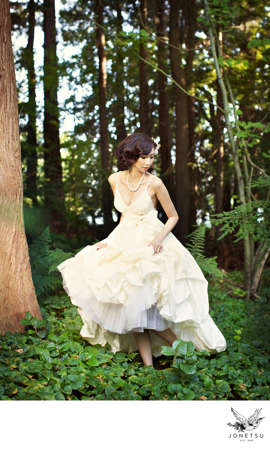 Stanley Park luxury pre wedding shoot in the forest