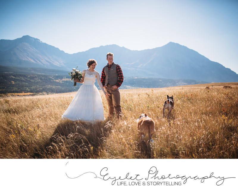 Crowsnest Pass Wedding Photography with Fur Babies