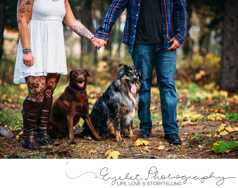 Engagement Photos with Fur Babies