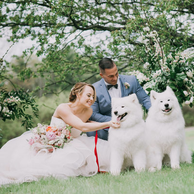 Mowfield Wedding Photos with Dogs
