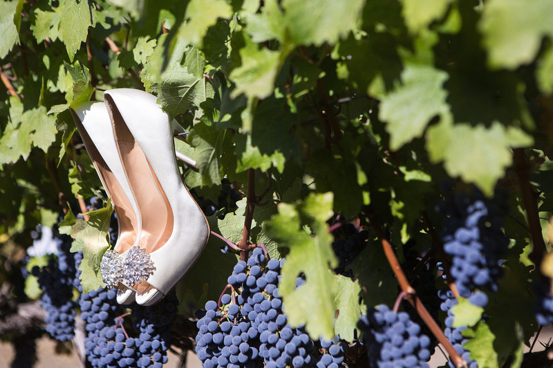 Wedding Shoes on a Grapevine
