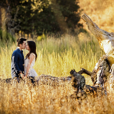 Wild Open Field Engagement Photographer San Francisco