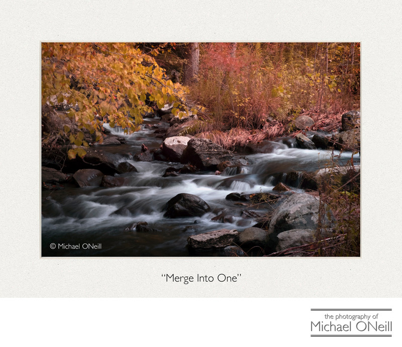 Collectible Fine Art Photograph Mountain Stream in Fall